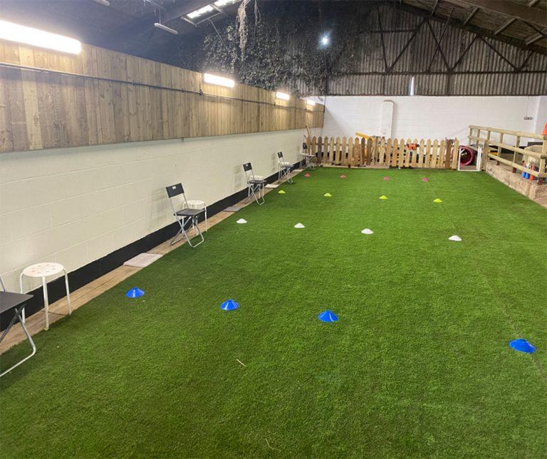 Dog Training in Darlington Middlesbrough Stockton Yarm Wynyard Hartlepool Sedgefield Durham